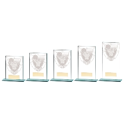 Cards Poker Trophies and Awards
