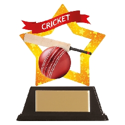 Mini-Star Cricket Acrylic Plaque