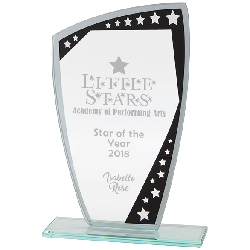 Cosmic Mirror Glass Award Black & Silver