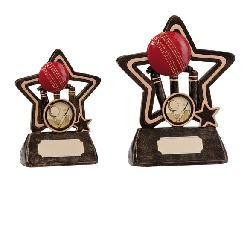 Little Star Cricket Award