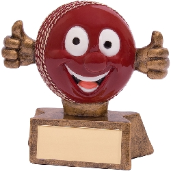 Smiler Cricket Award