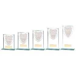 Cricket Trophies & Awards Resin