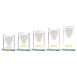 Snooker/Pool Glass Awards